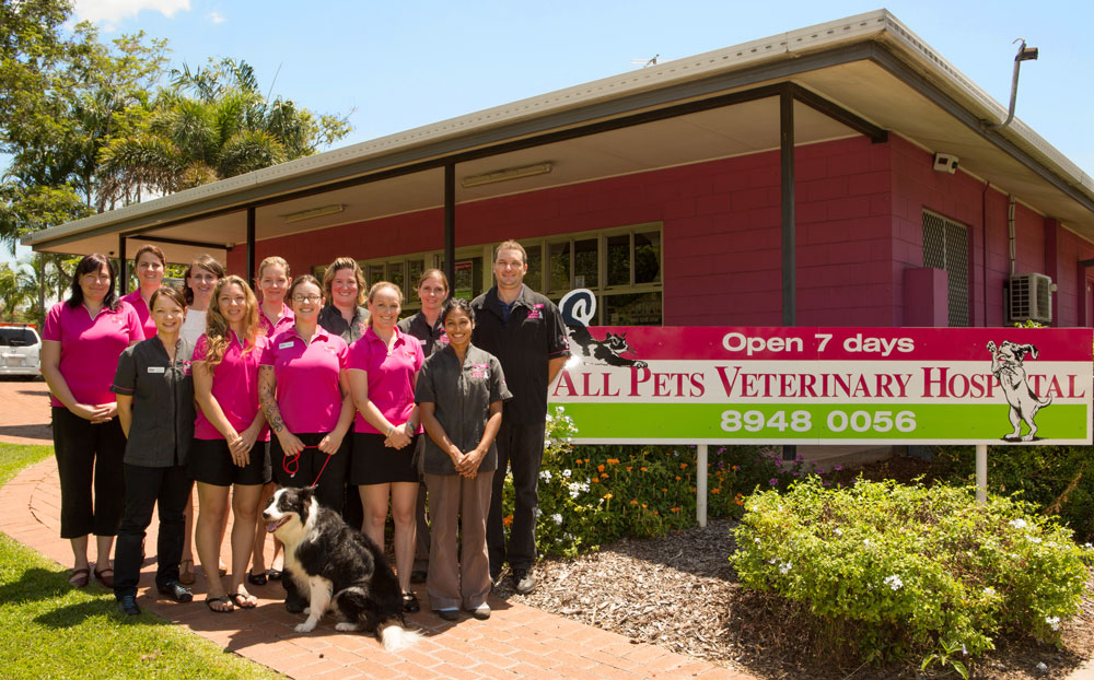 Our team at All Pets Vet